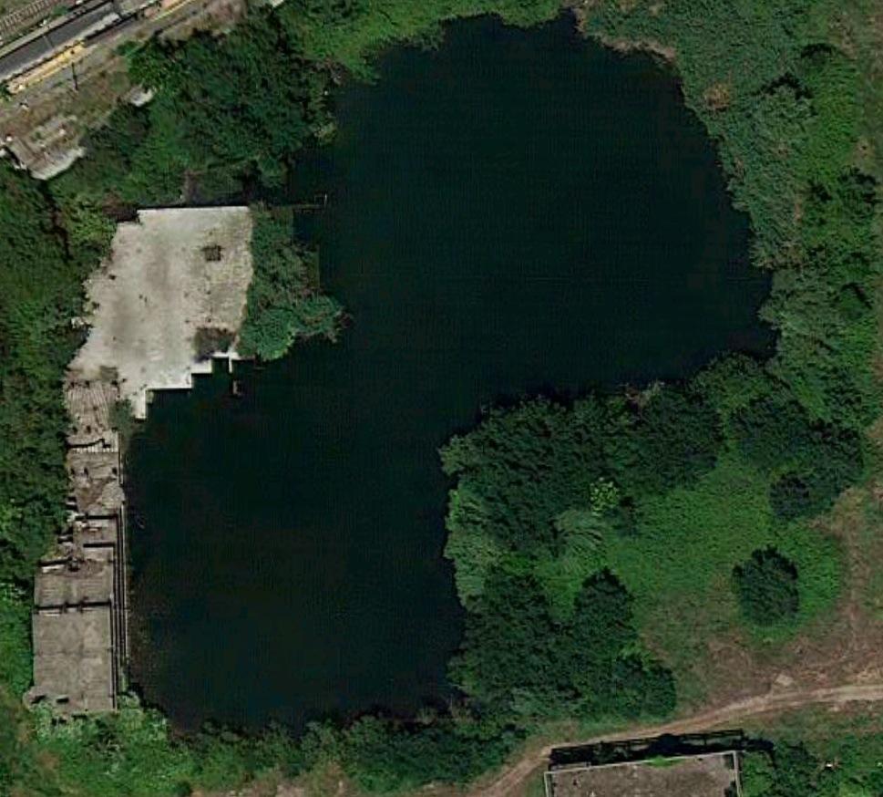 Buono dunque naturale anche il lago di ruspa for Laghetto naturale